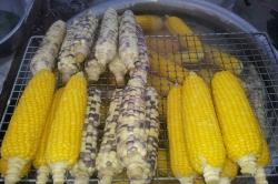 sweet-corn-1