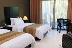 Luxury (superior room)